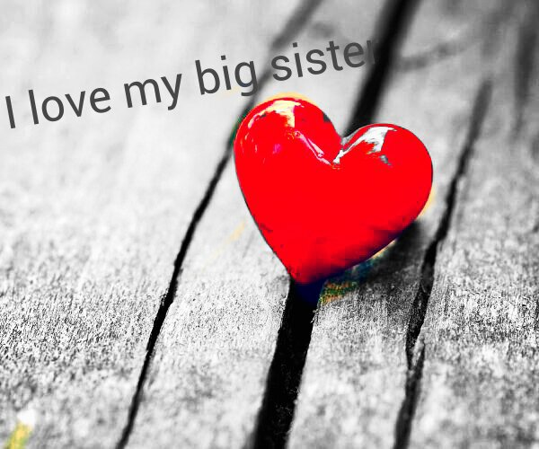 Awesome Love My Big Sister Quotes 17 Great Pictures