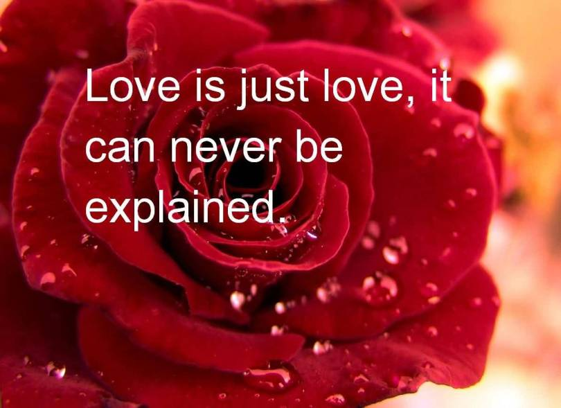 Love Quotes Valentines Day 08