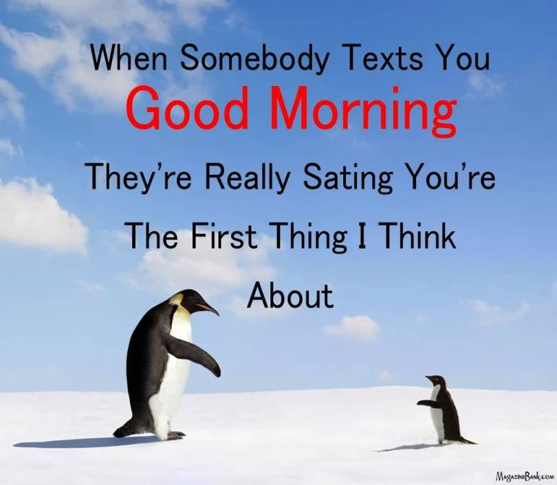 Love Sms Quotes For Her Alluring 20 Love Sms Quotes For Her Sayings And Pictures  Quotesbae