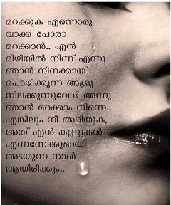 Malayalam Love Quotes Entrancing Malayalam Love Quotes 19  Quotesbae