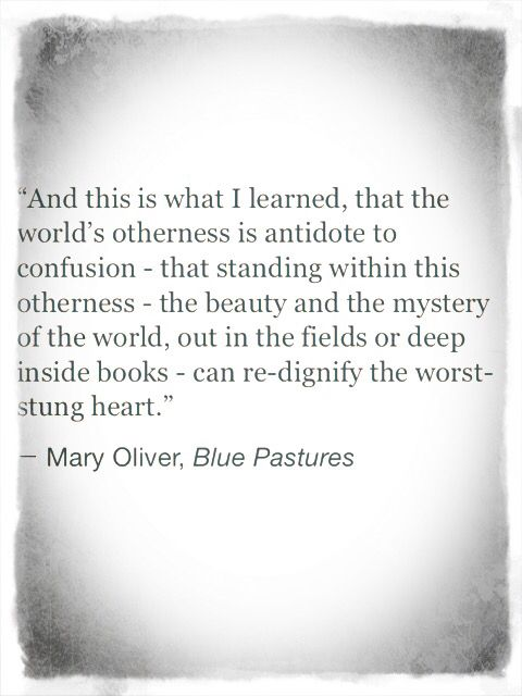 Mary Oliver Love Quotes Amazing Mary Oliver Love Quotes 06  Quotesbae