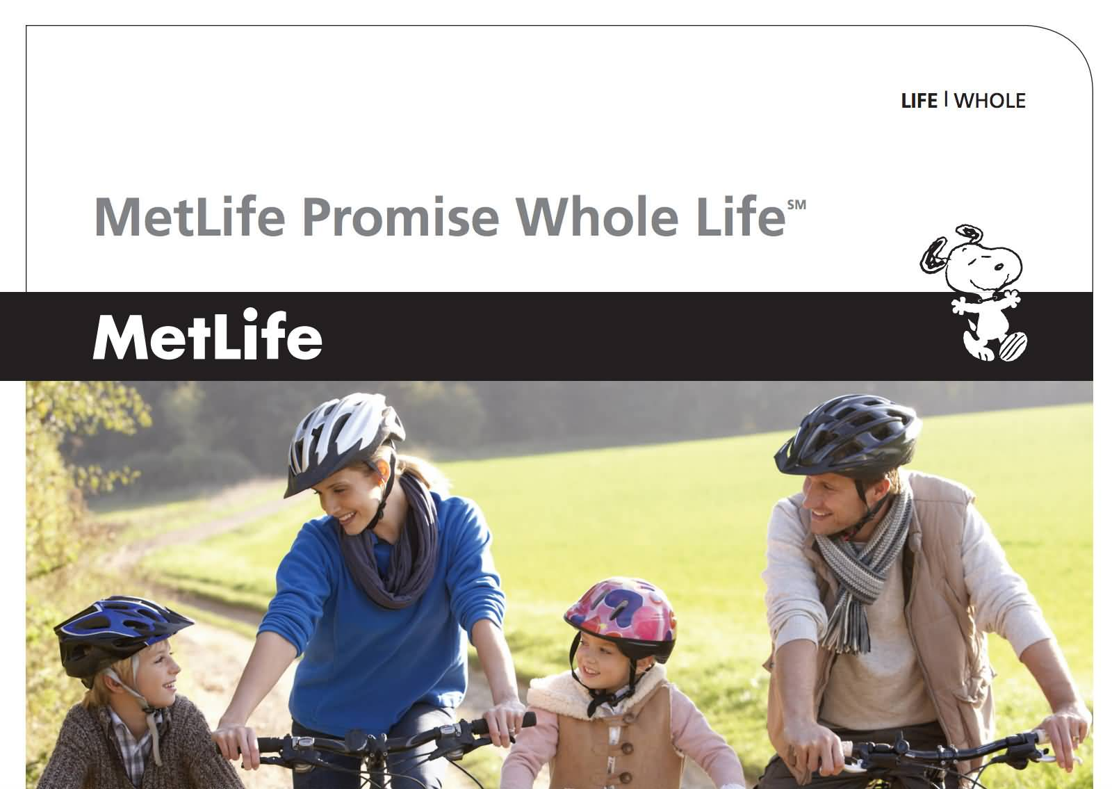 Metlife Quote Life Insurance Entrancing Metlife Life Insurance Quote 12  Quotesbae