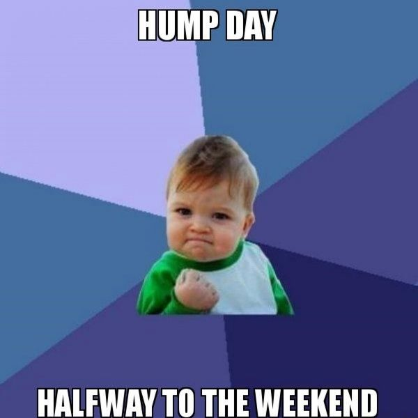 Most hilarious hump day memes graphic