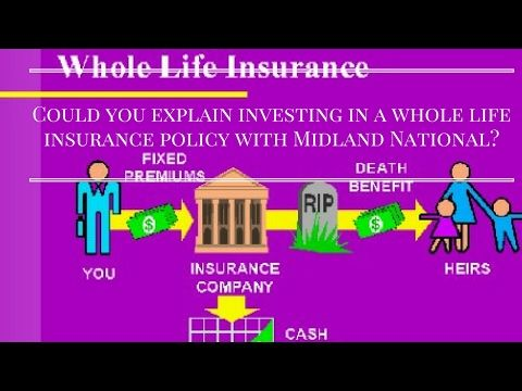 Permanent Life Insurance Quotes Cool Permanent Life Insurance Quotes Online 05  Quotesbae