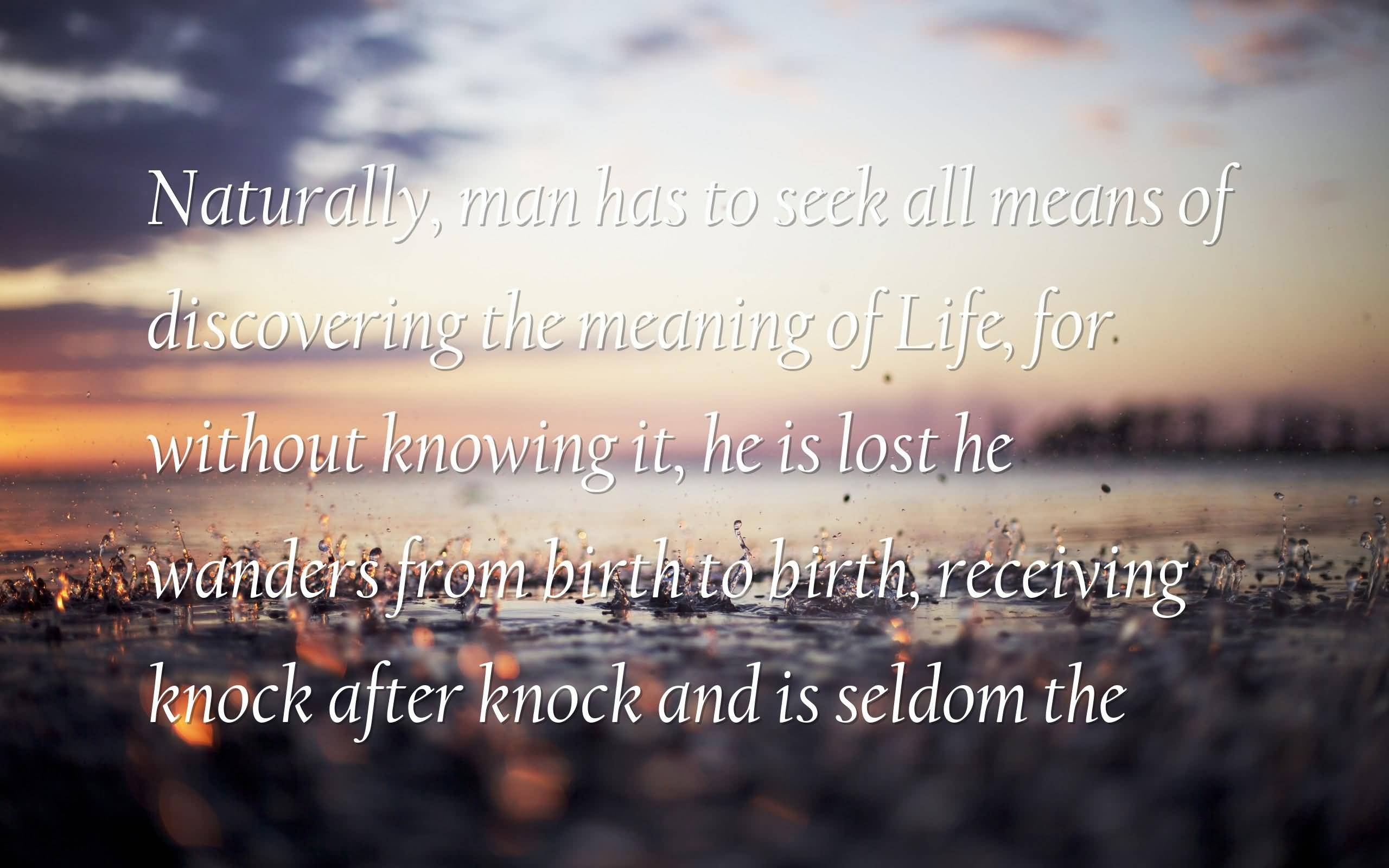 Meaning Of Life Quotes Philosophers Quotes On The Meaning Of Life 02  Quotesbae