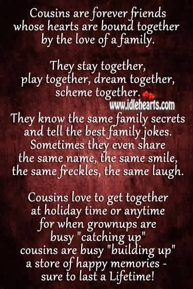 Quotes About Cousin Friendship Beauteous Quotes About Cousin Friendship 04  Quotesbae