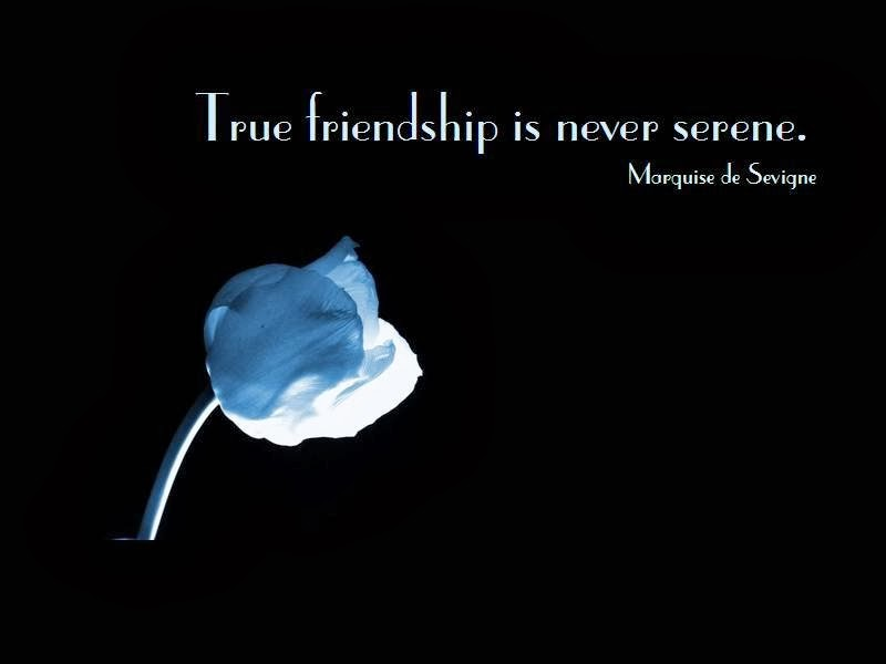 Famous Quote About Friendship Captivating 25 Quotes About Friendshipfamous Authors  Quotesbae