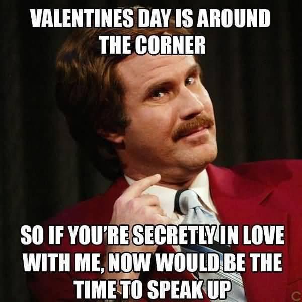 Amusing so in love meme joke