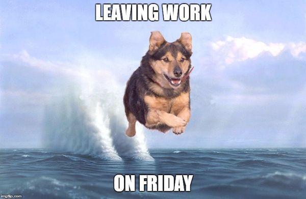 50 Top Leaving Work on Friday Meme Joking Images | QuotesBae