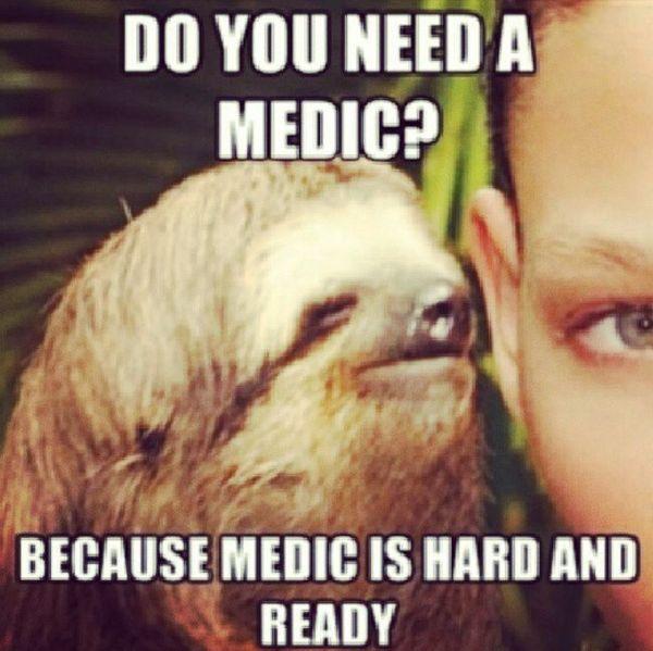 Funniest cool dirty sloth memes joke