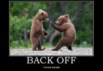 Funny Bear Quotes Meme Image 11