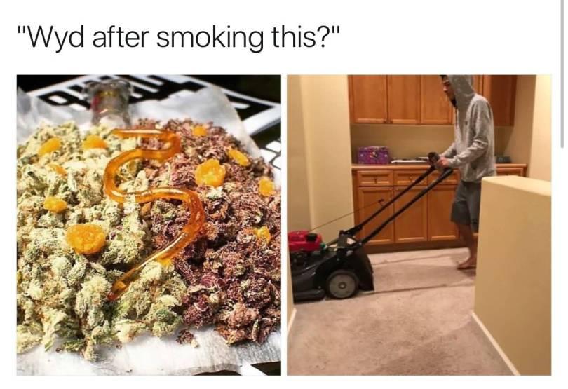 Wyd After Smoking This Meme Photo Joke 01