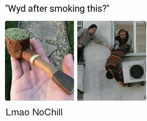Wyd After Smoking This Meme Photo Joke 14