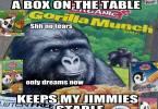 Gorilla Munch Meme Funny Image Photo Joke 12