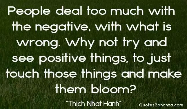 picture quote by thich nhat hanh
