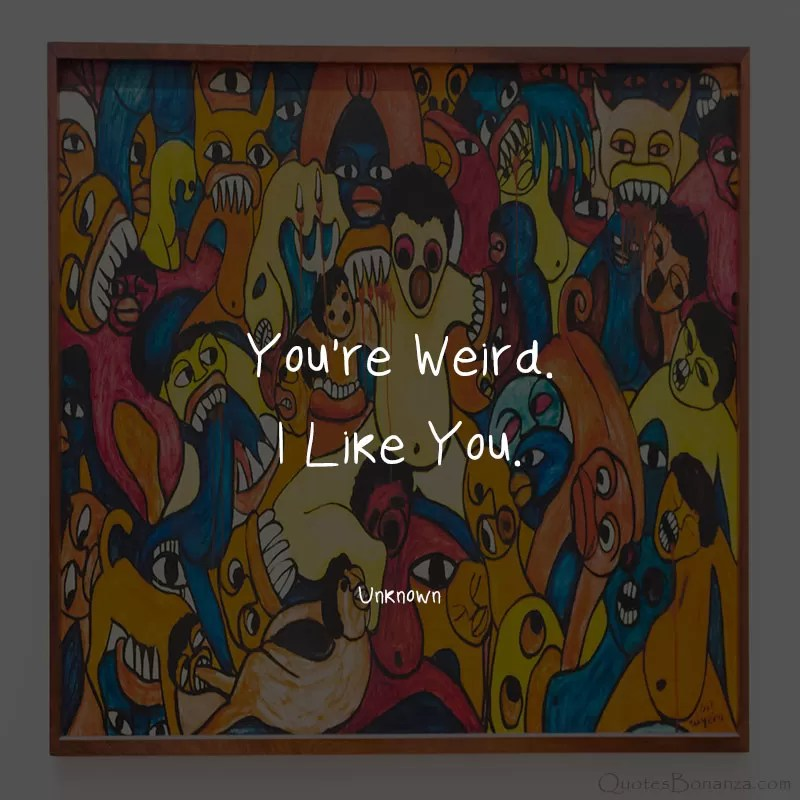 funny-i-like-you-quotes