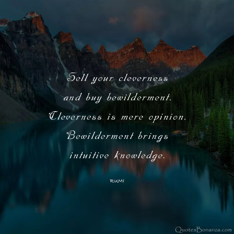 cleverness-QUOTE-RUMI