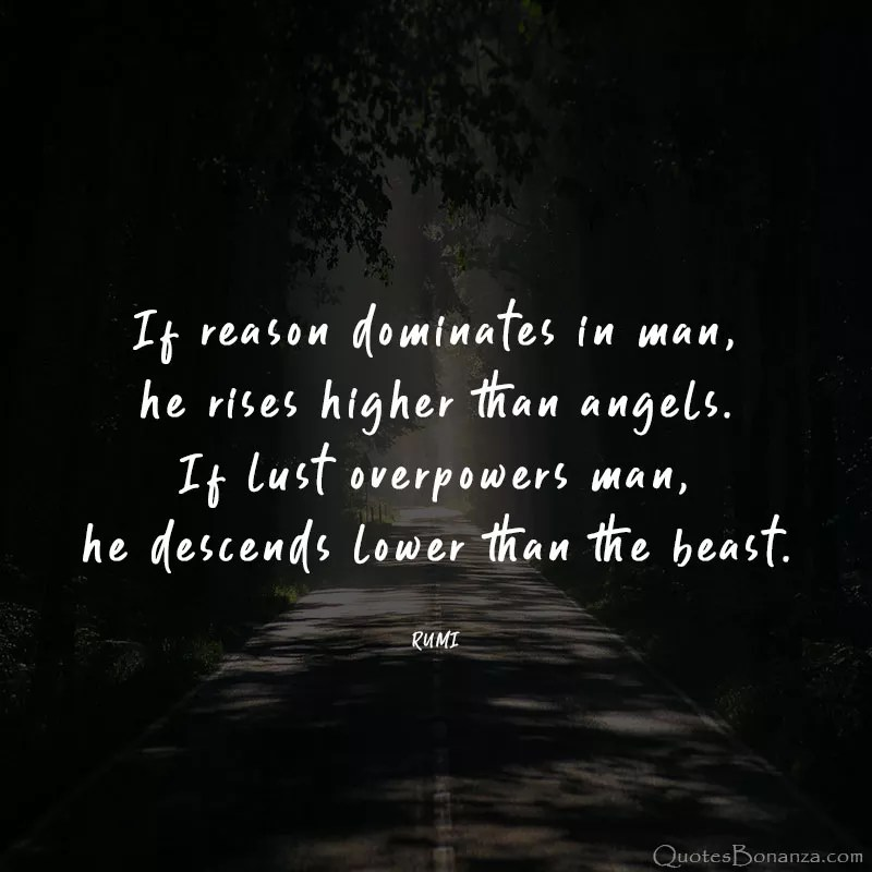 reason-QUOTE-RUMI