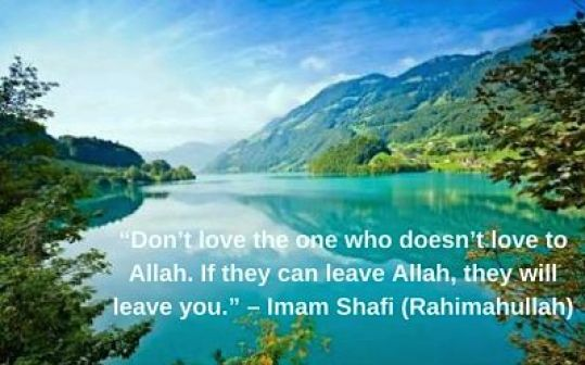 Imam shafi quotes on love