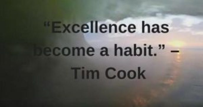 tim cook quotes on excellence