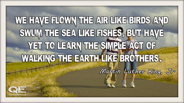We have flown the air like birds and swum the sea like fishes, but have yet to learn the simple act of walking the earth like brothers. - Martin Luther King - Jr.