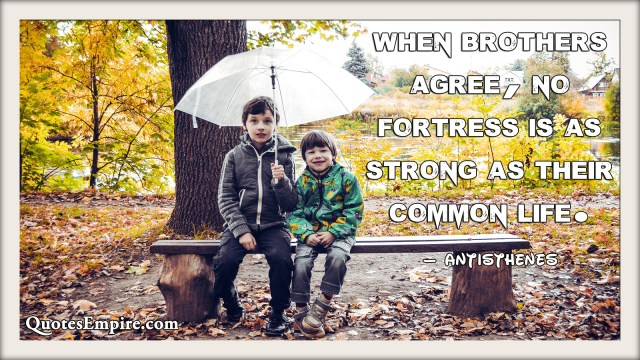 When brothers agree, no fortress is as strong as their common life