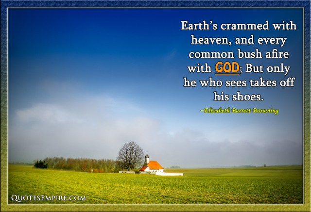 Earth's crammed with heaven, and every common bush afire with God; But only he who sees takes off his shoes