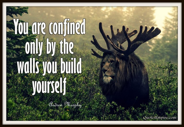 You are confined only by the walls you build yourself. - Quote by Andrew Murphy