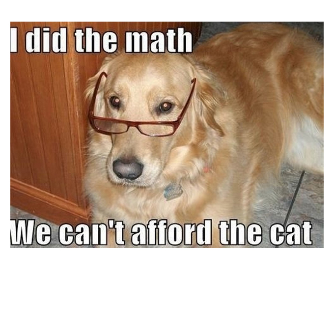 28 Hilarious Dog Memes For 2018  QuotesHumorcom