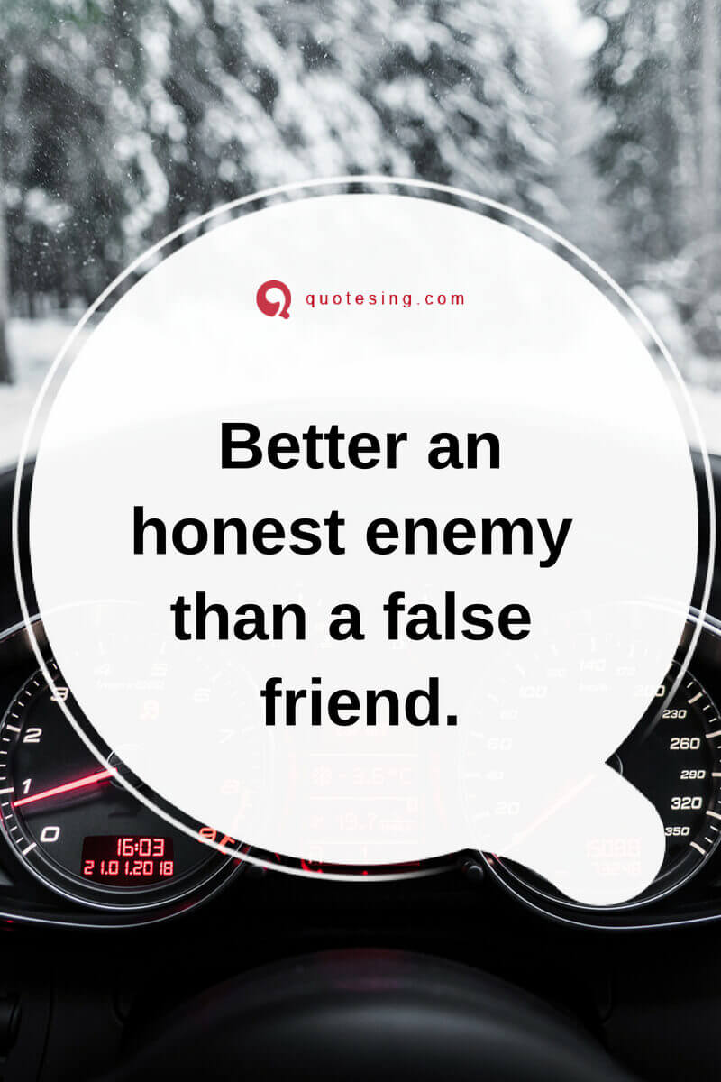 Quotes About Fake Friends : quotes, about, friends, Friends, Quotes, Images, Quotesing