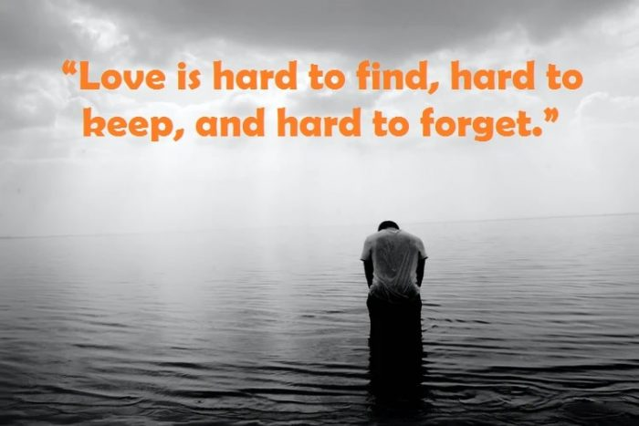 Sacred Heart Feelings Most Delhi People Regret Their Heartbreak_Quotes Networks