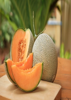 Immunity Formula From Strengthening Immunity To Preventing Old Age, There Are Many Reasons To Eat Melon_Image Source Google