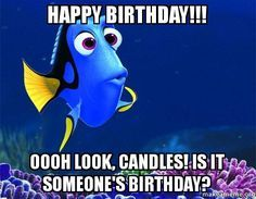 Top 29 Birthday Memes Quotes And Humor