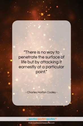 "Charles Horton Cooley quote: ""There is no way to penetrate the…""- at QuotesQuotesQuotes.com"