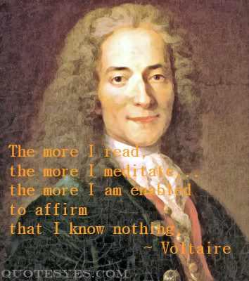 Voltaire meditation quote