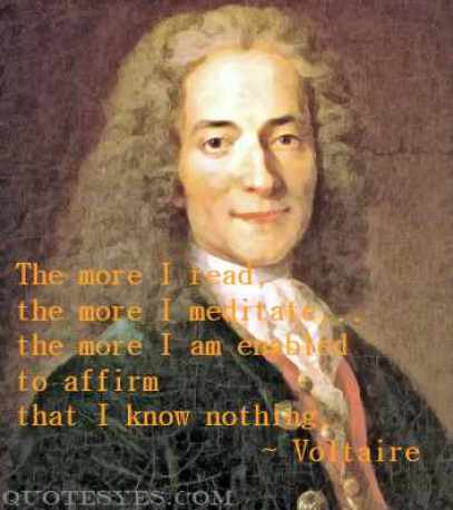 Voltaire meditation quote