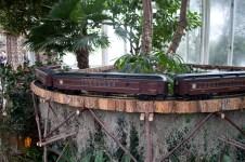 Bronx Botanical Train Show-7