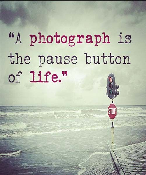A photograph is the pause button of life  Sayings image