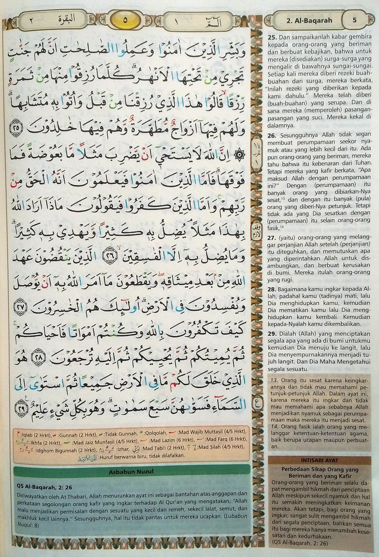 Surah Al Baqarah Ayat 30 : surah, baqarah, Baqarah, 25-29, (Hal., Quran, Tajwid, Terjemahan