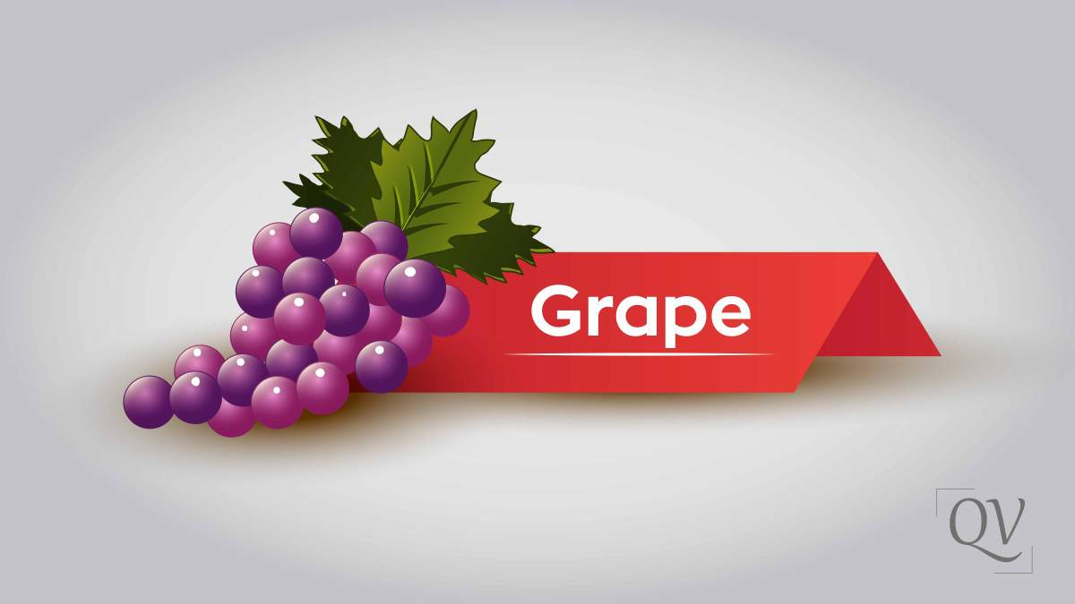 Grapes mentioned in Quran and its remarkable health benefits