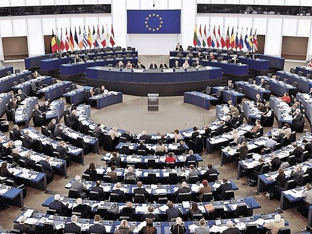 ¿Por qué dijo la ANPP envió declaración al Europarlamento?