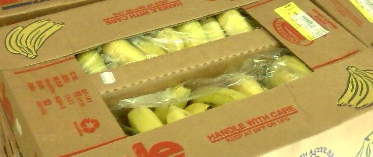 shipping cartons full of bananas