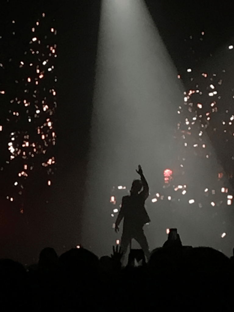 A photo from the Panic! At The Disco concert in February.