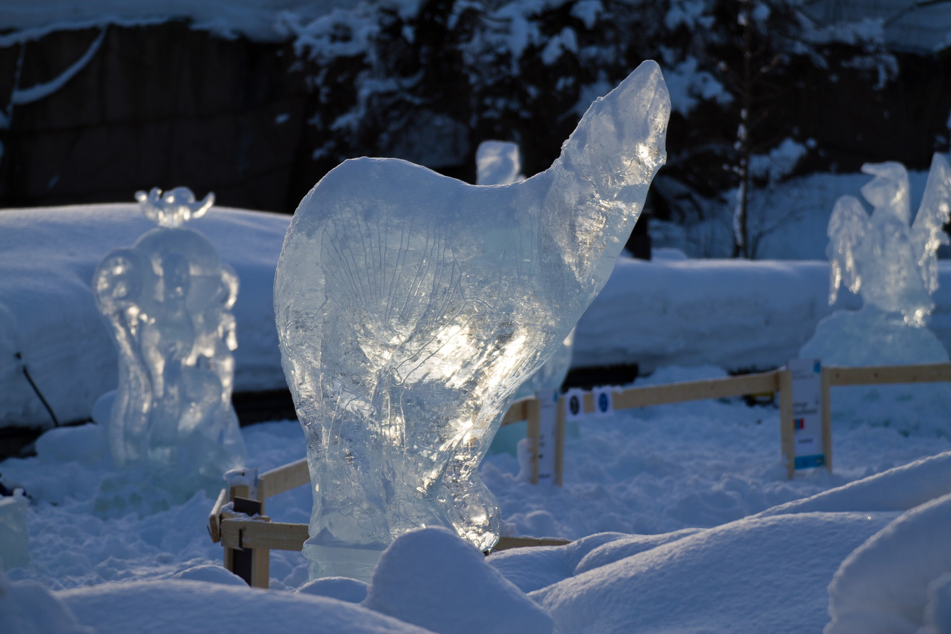 Ice sculptures  Photography blog by Sampsa Sulonen