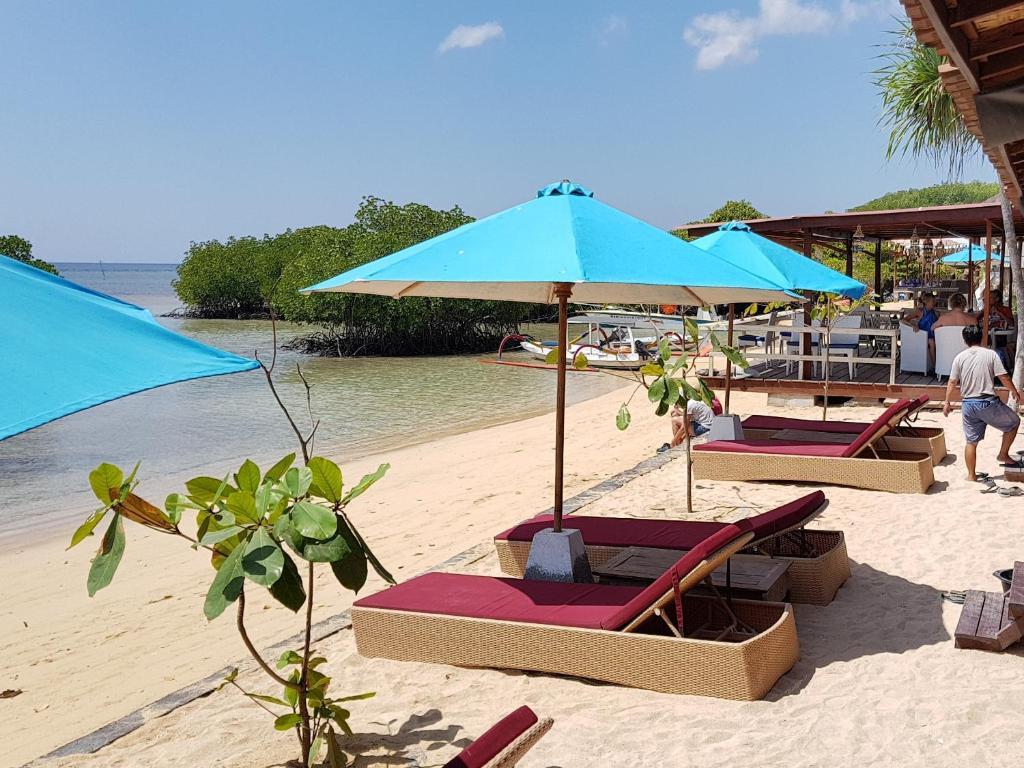 Mangrove Paradise Retreat Nusa Lembongan Harga 2020 Terbaru