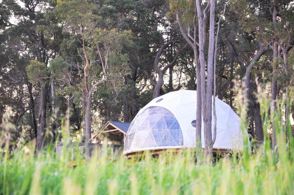 Luxury Tent Mile End Glamping Pty Ltd Yelverton Australia
