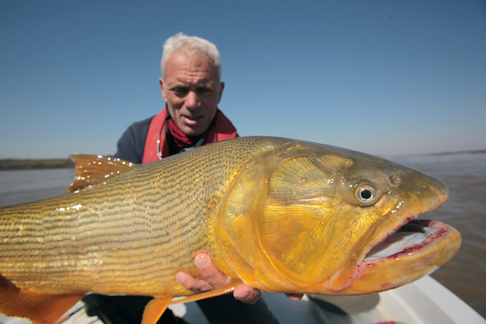 9 River of Blood Pictures  River Monsters  Animal Planet