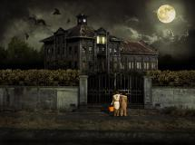 Scariest Halloween Haunted Houses