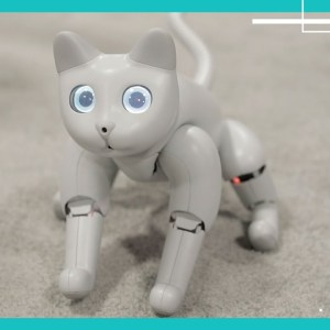 Can you love this robot cat as much as you'd love a real one?