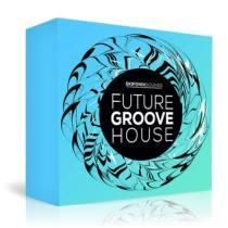 Skifonix Sounds Future Groove House WAV MiDi NATiVE iNSTRUMENTS MASSiVE